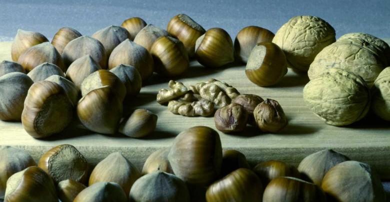 Nüsse sind wertvolle natürliche Liefernaten von Magnesium bei Schlaflosigkeit.Nüsse sind wertvolle natürliche Liefernaten von Magnesium bei Schlaflosigkeit.Nüsse sind wertvolle natürliche Liefernaten von Magnesium bei Schlaflosigkeit.